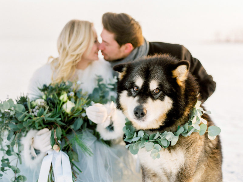 Frozen Wonderland - A Winter Elopement Inspiration Shoot