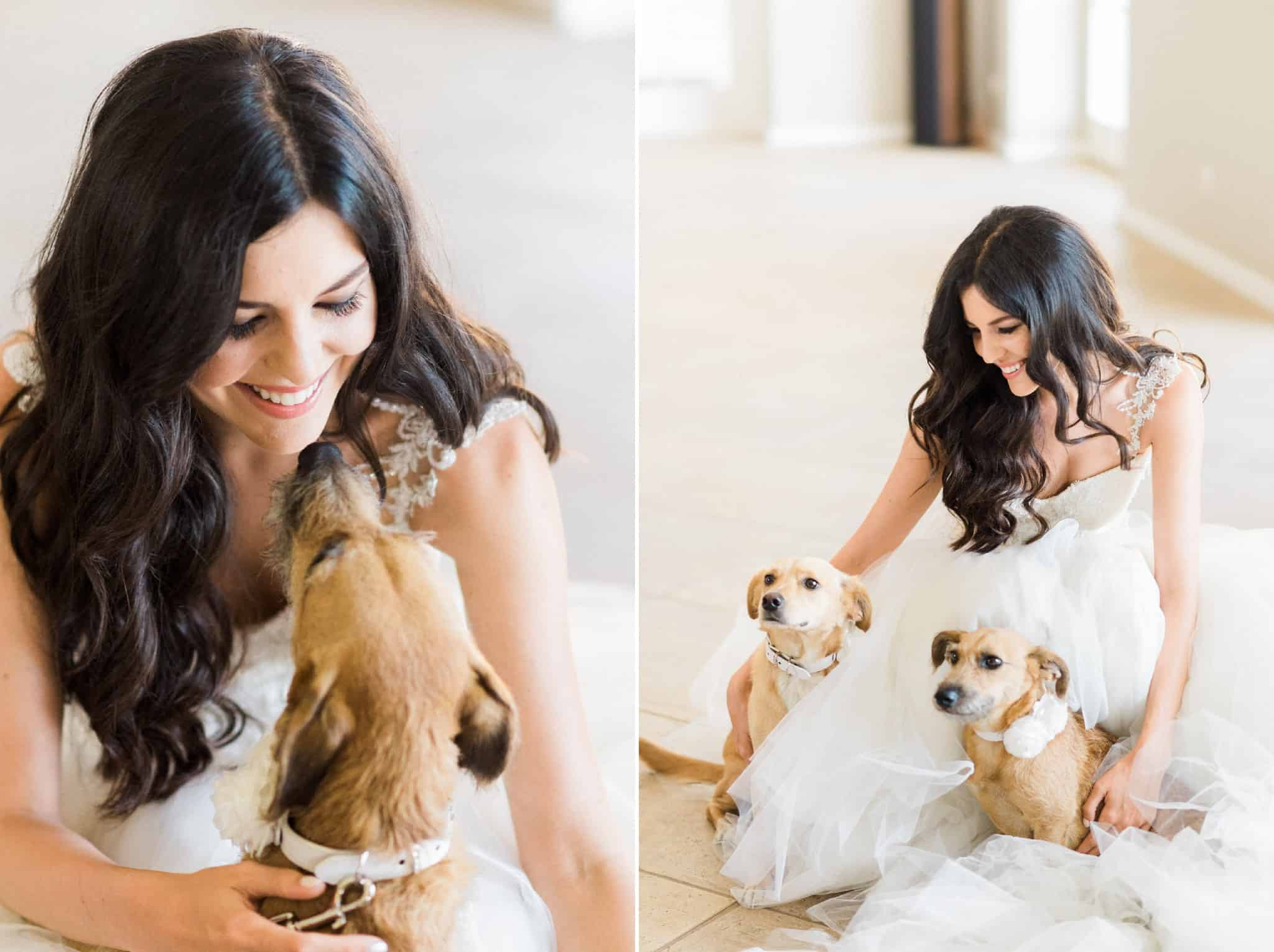 Wedoverhills_Wedding_Bride_With_Dogs_0012